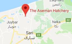 مکان روی نقشه